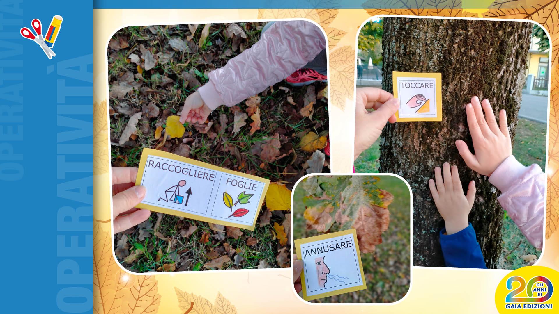 Attivita didattiche legate all'autunno